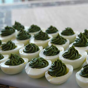 Healthy Eggs - Spirulina green devilled eggs tasty and a conversation starter.